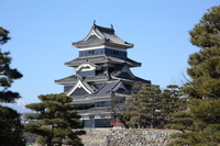 Matsumoto Castle is surrounded by pine Stock photo [2892667] Matsumoto