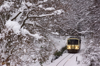 One-man train to go the snow Stock photo [2896999] Railway