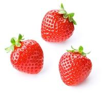 Strawberry Stock photo [2897055] Strawberry