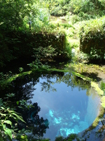 Kakita River springs Stock photo [2897450] Kakita