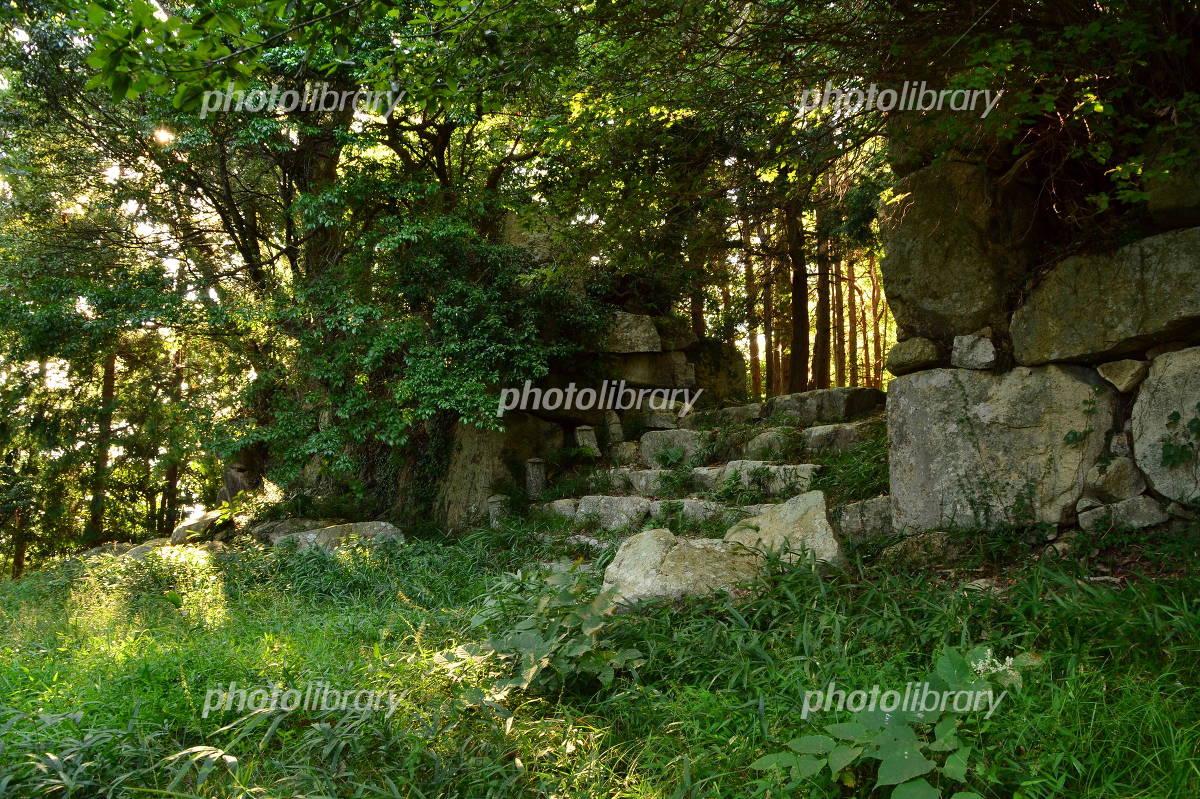 Kannonji Castle Photo