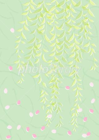 柳と桜 イラスト素材 2980214 フォトライブラリー Photolibrary