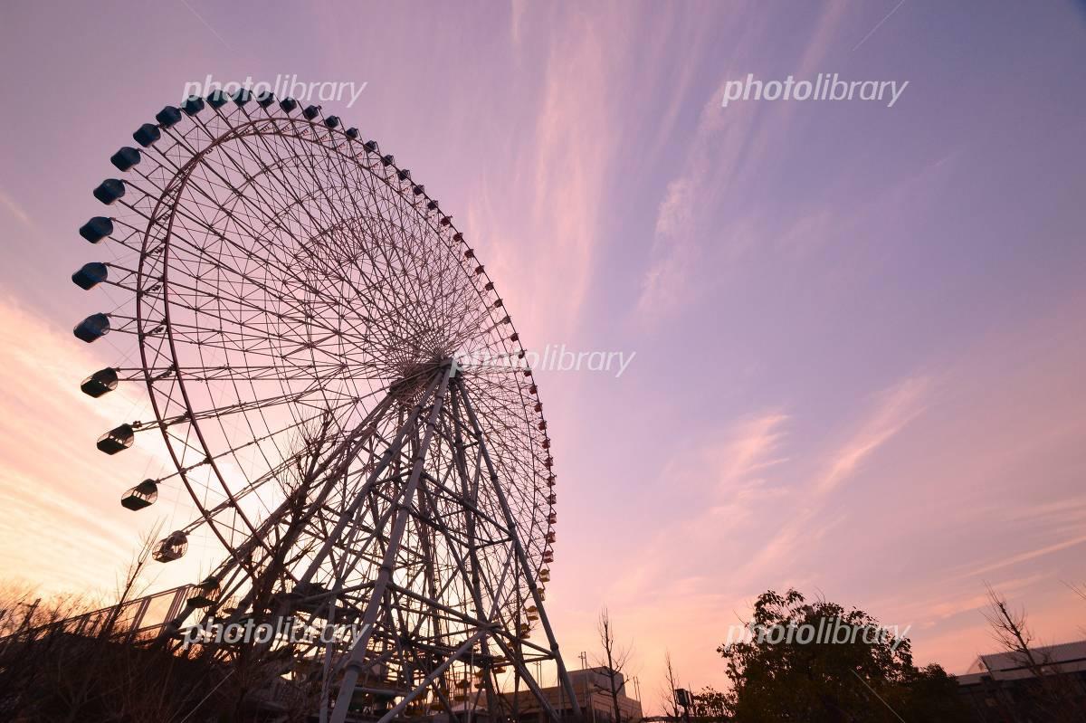 Dusk of Ferris wheel Photo