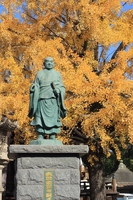 Kyoto top Myoji Nichiren image and ginkgo Stock photo [2982429] Top