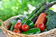 Vegetables Stock photo [3147849] Vegetables