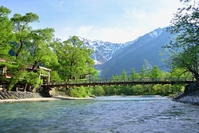 Fresh green of Kamikochi Stock photo [3149198] High
