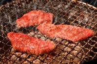 Roast meat Stock photo [3157841] Roast
