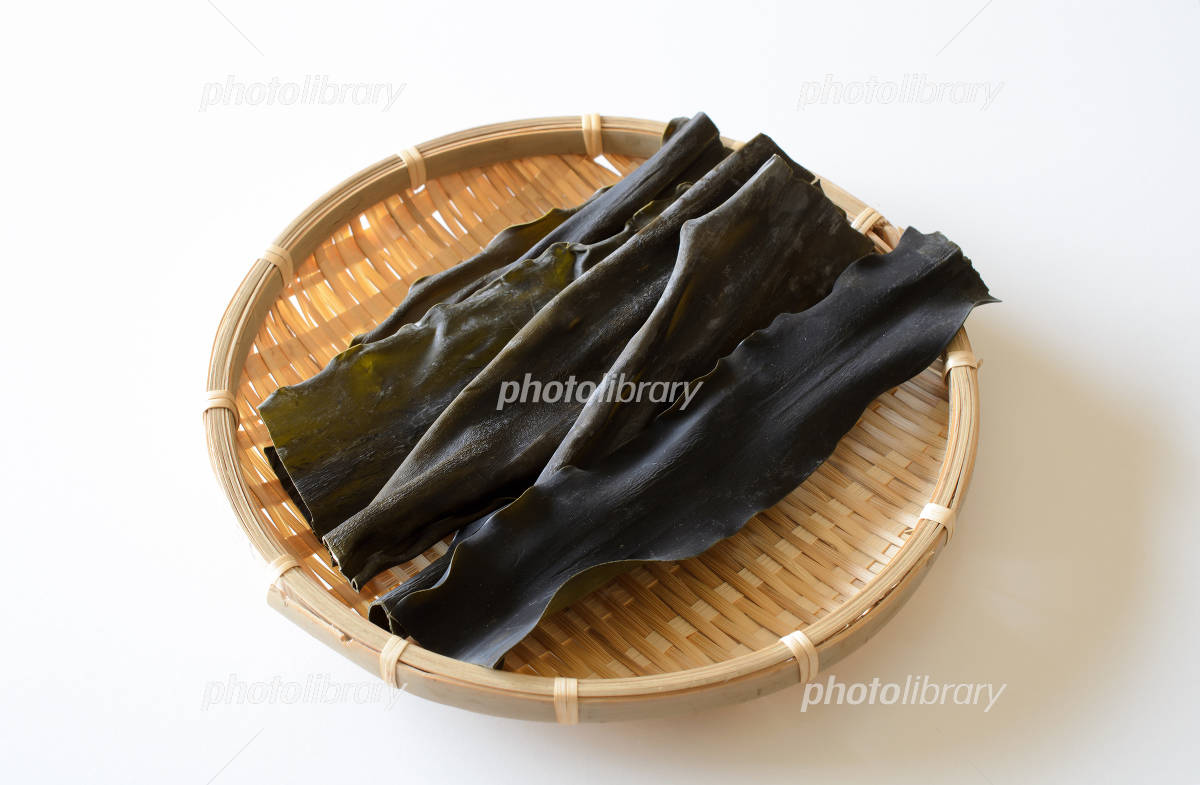 Kelp Photo