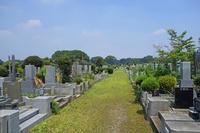 Grave landscape Stock photo [3268239] Grave