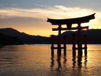Itsukushima Shinto shrine Stock photo [3360741] Hiroshima