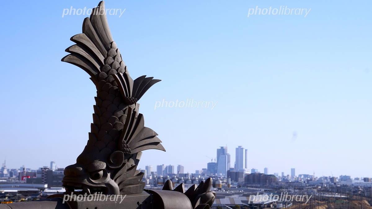 A killer whale and Nagoya Station Photo