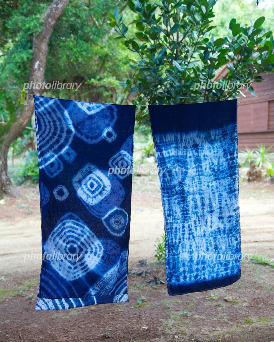 Indigo dyeing Photo