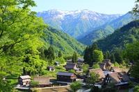 Toyama Prefecture Nanto Gokayama of world heritage fresh green Stock photo [3539421] Gokayama