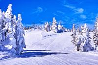 Shiga Kogen Ski Stock photo [3551118] Ski