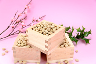 Events Setsubun roasted soybean Stock photo [3551296] Traditional