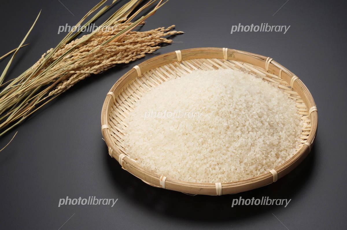 Rice and rice Photo