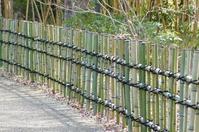 I teamed up new bamboo fence Stock photo [3657842] Bamboo