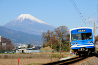 Train of Mount Fuji and Izuhakone Railway Sunzu Line Stock photo [3659500] Electric