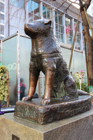 Faithful dog Hachiko Stock photo [3664562] Hachikō