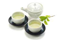 New tea and young leaves in white back Stock photo [3766025] new
