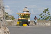 南イタリアのレモン売り