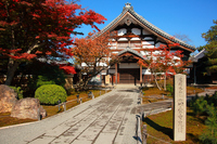 Of the time of autumnal leaves Kodaiji Stock photo [3974799] Temple