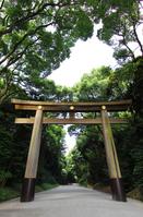Meiji Shrine torii Stock photo [4059519] Meiji
