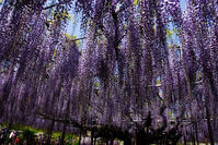 OTOH Stock photo [124201] Ashikaga