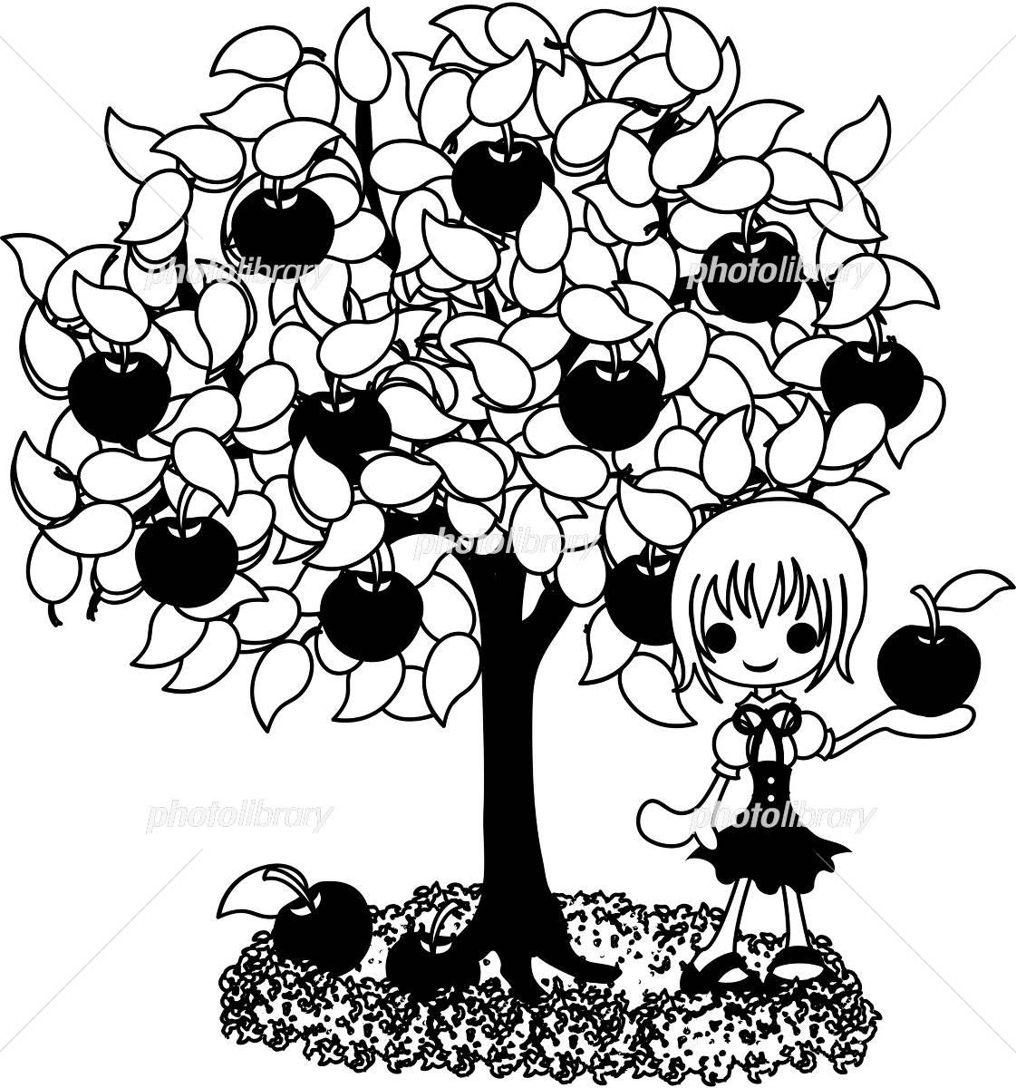 果物の木のイラストモノクロ イラスト素材 4131539 フォト