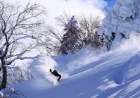 Powder snow Stock photo [4130870] powder
