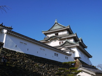 Wakayama Castle Stock photo [4175218] Wakayama
