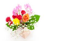 flower arrangement Stock photo [4273641] flower