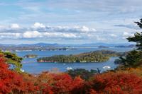 Three most scenic spots in Japan Matsushima Stock photo [4280193] Landscape