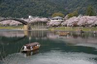 錦帯橋公園