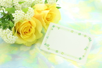 Rose and message card Stock photo [4356743] flower