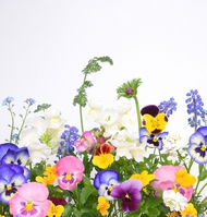 Floral background Stock photo [4356788] flower