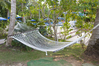Palm trees and hammock Stock photo [4362256] Guam