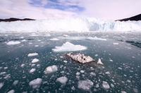 Ice floe glacier Greenland Stock photo [4365371] world