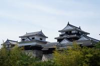 Matsuyama symbol Matsuyama Castle Stock photo [4432490] Matsuyama
