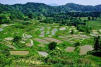 Rice Terraces of the Niigata Prefecture Tokamachi star Pass Stock photo [4436667] Star