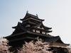Sakura bloom Matsue ID:4432543