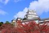 Fall of Himeji Castle ID:4433384