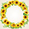 sunflower ID:4434297