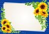 sunflower ID:4434299