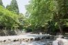 Onyu River ID:4439082