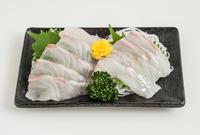 Sashimi of sea bream Stock photo [4519036] Sashimi