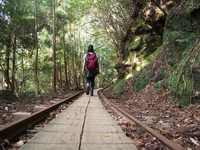 trekking Stock photo [4523899] Yakushima