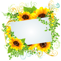 Beautiful frame of summery sunflower [4523912] sunflower