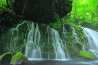 Original waterfall subsoil water of summer Stock photo [4525624] Chokai