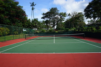 Hawaii Tennis Court Stock photo [4529849] Sport